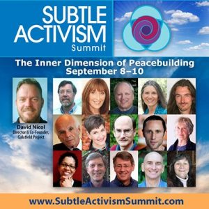 Subtle Activism Summit